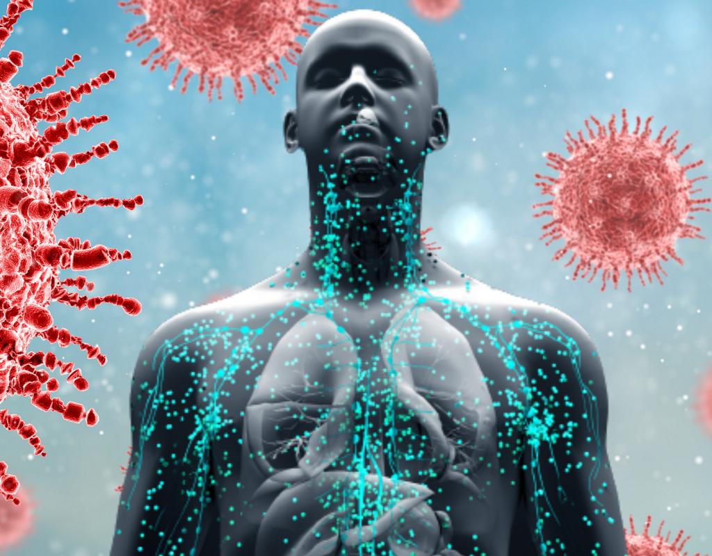 imunitny-system